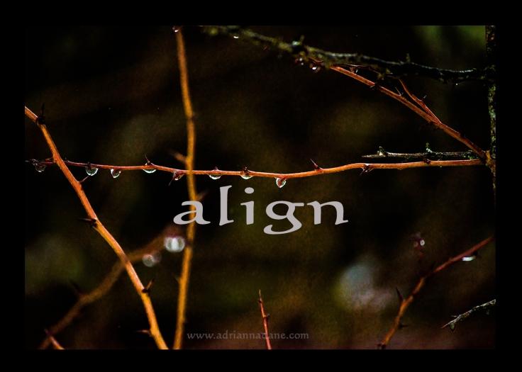 align_01