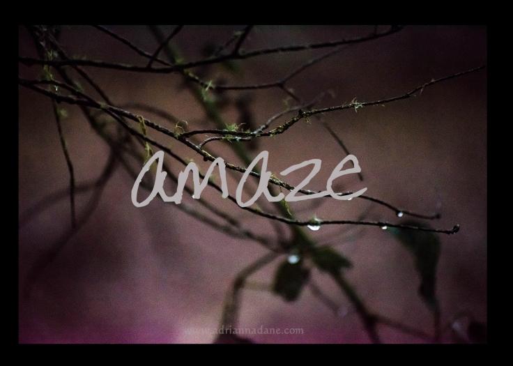 amaze_02