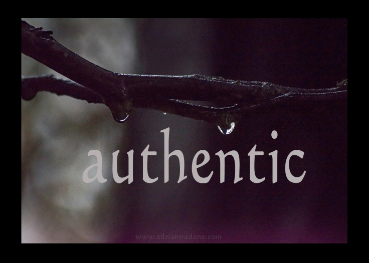 authentic_03