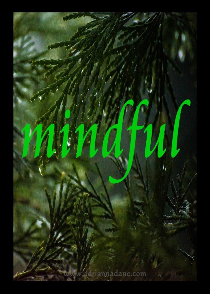 mindful_11