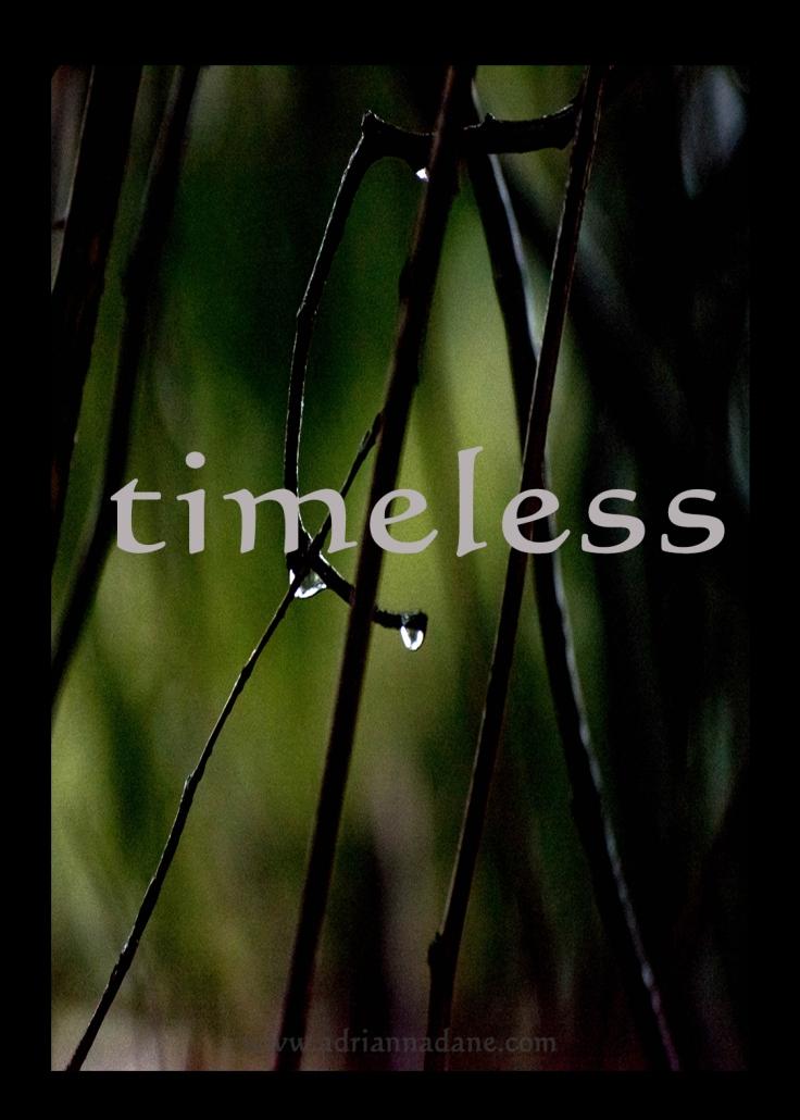 timeless_23