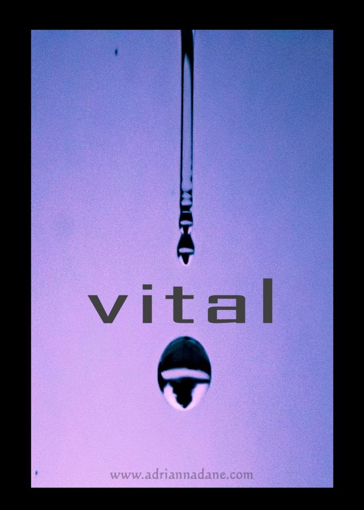 vital_25.jpg