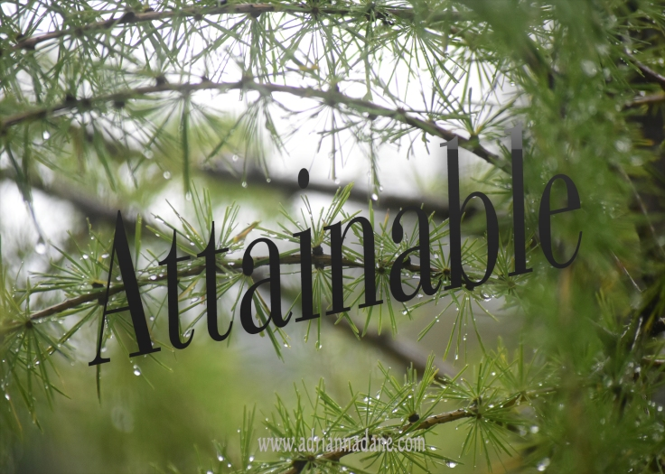 attainable_39
