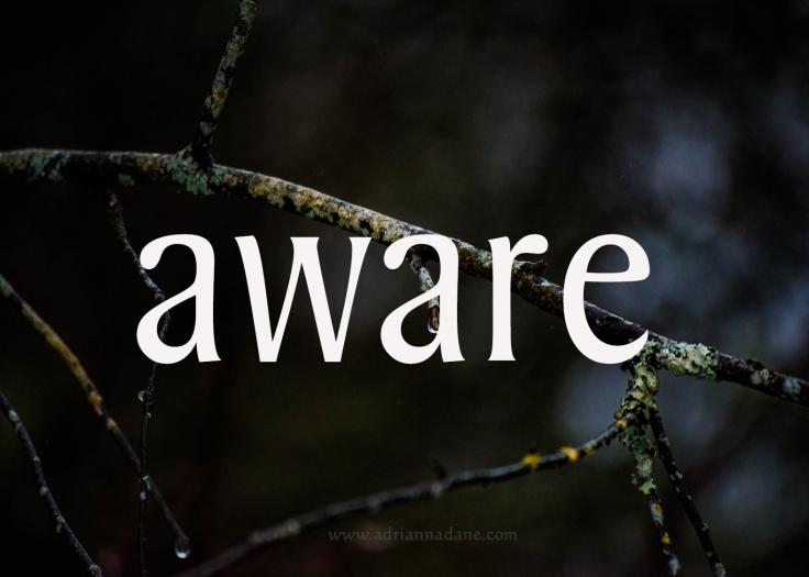 aware_29
