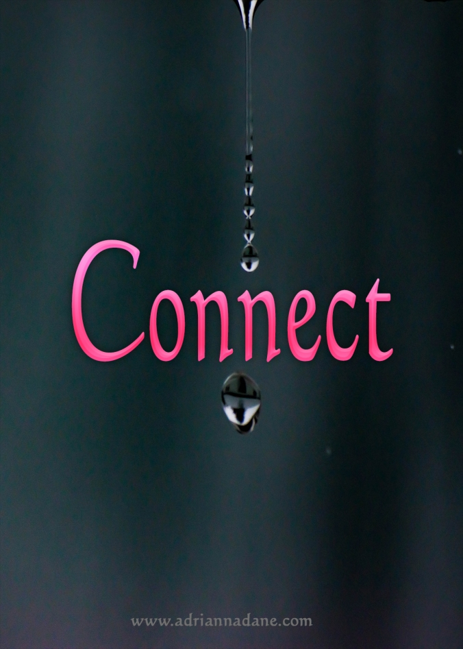 connect_38