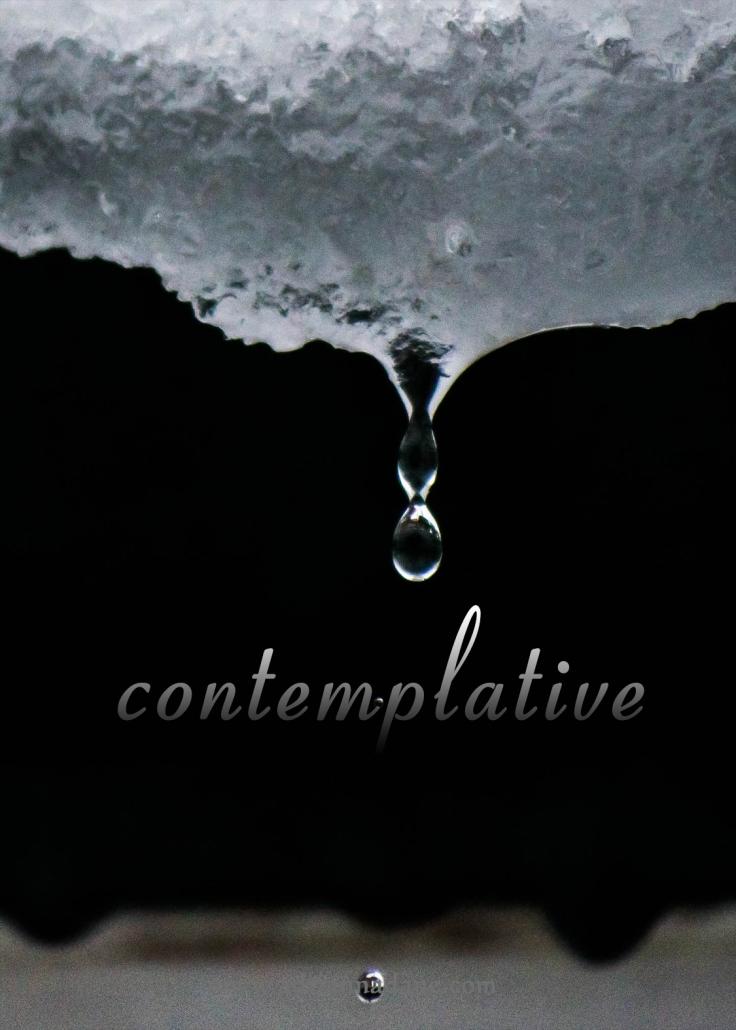 contemplative_42