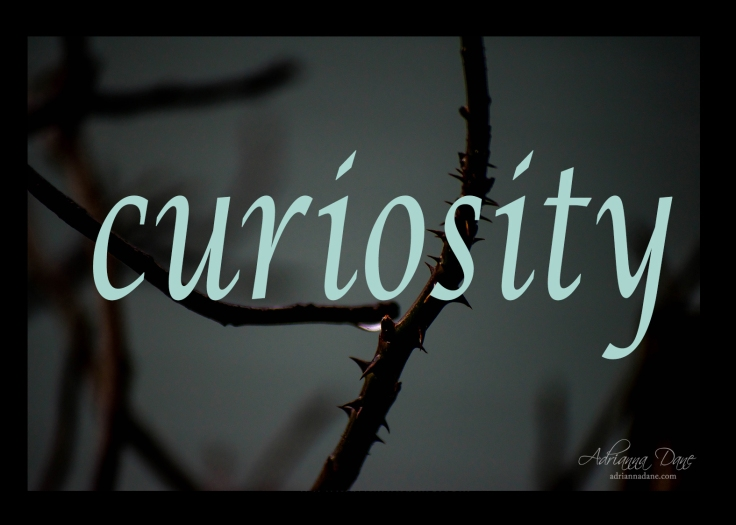 curiosity_30_branded