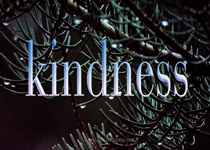 kindness_31