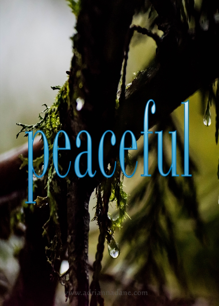 peaceful_33