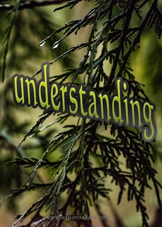 understanding_36