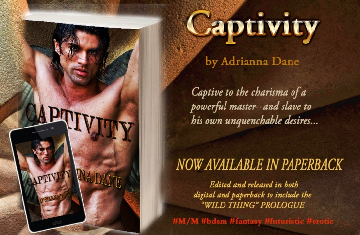 Captivity_banner3_paperback