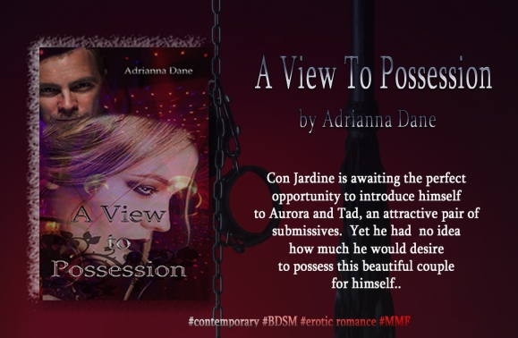 ViewToPossession_banner