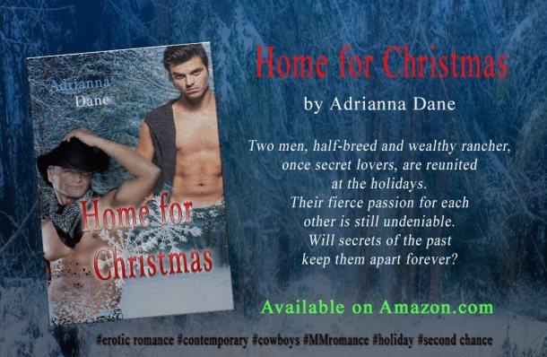 homeforchristmas_banner